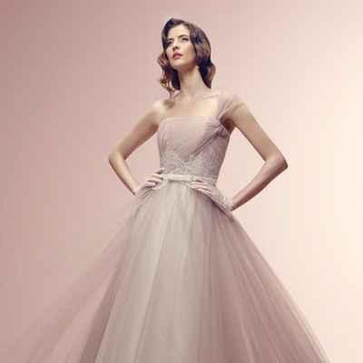 French ivory short sleeve wedding dresses