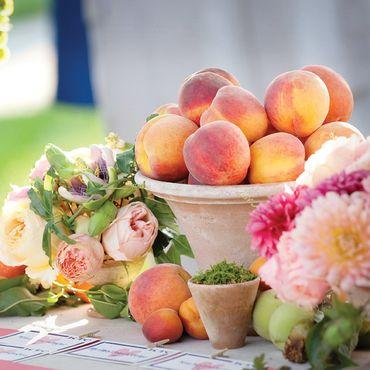 Fruit summer photo session decor