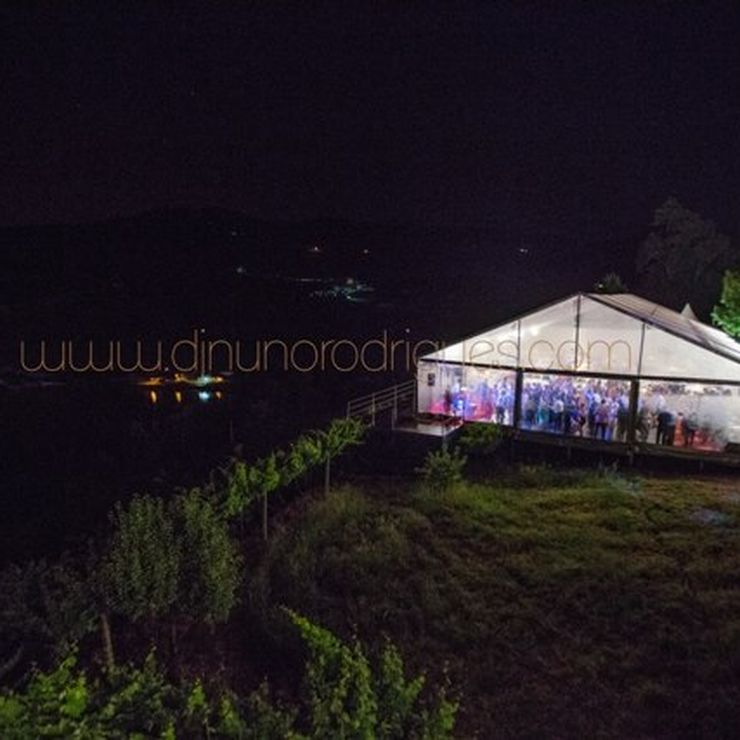 Parties and weddings
