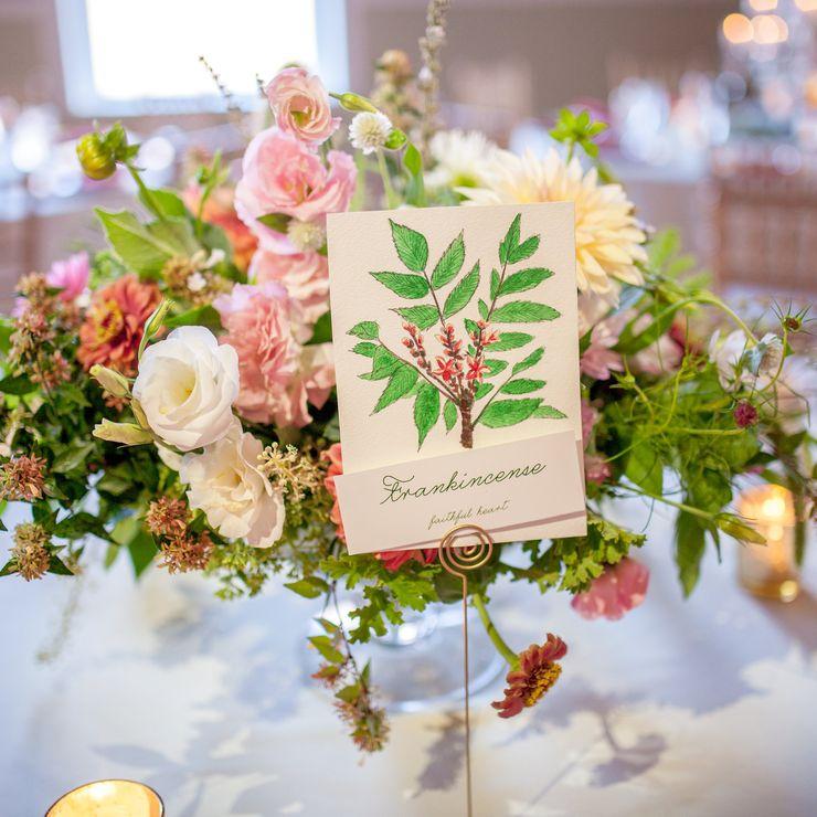 Steve and Katelyn's Garden Wedding