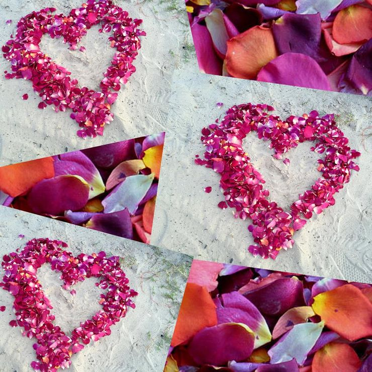 Amy & Jeff Honeymoon Petals | Flyboy Naturals Rose Petals