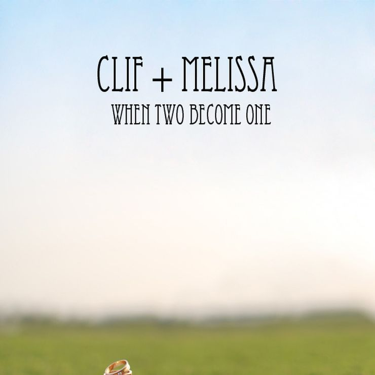 The Wedding of Cliff & Melisa